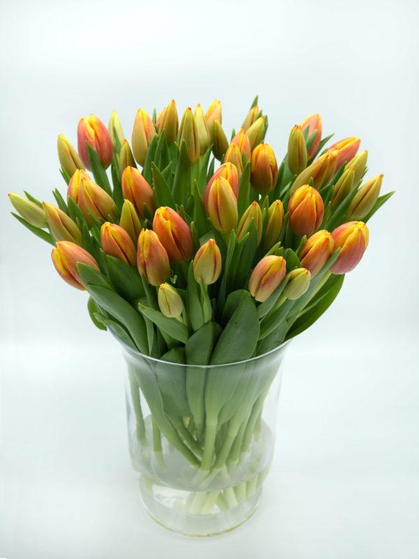 oranje gele tulpen