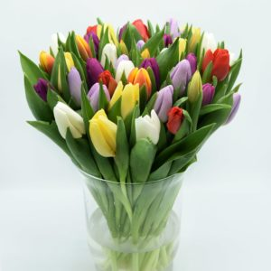 gemengd boeket tulpen
