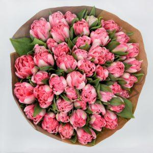 Roze Foxtrot Tulpen
